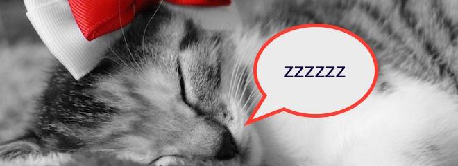 Z … is for Zzzzzz