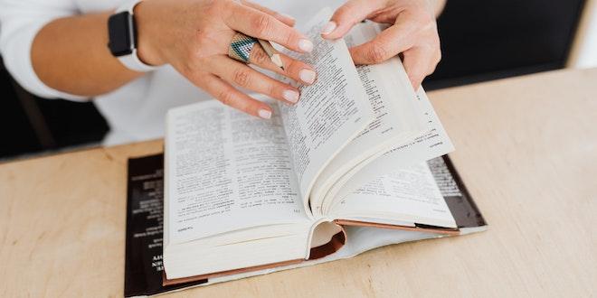 Translating the word 'gerne'